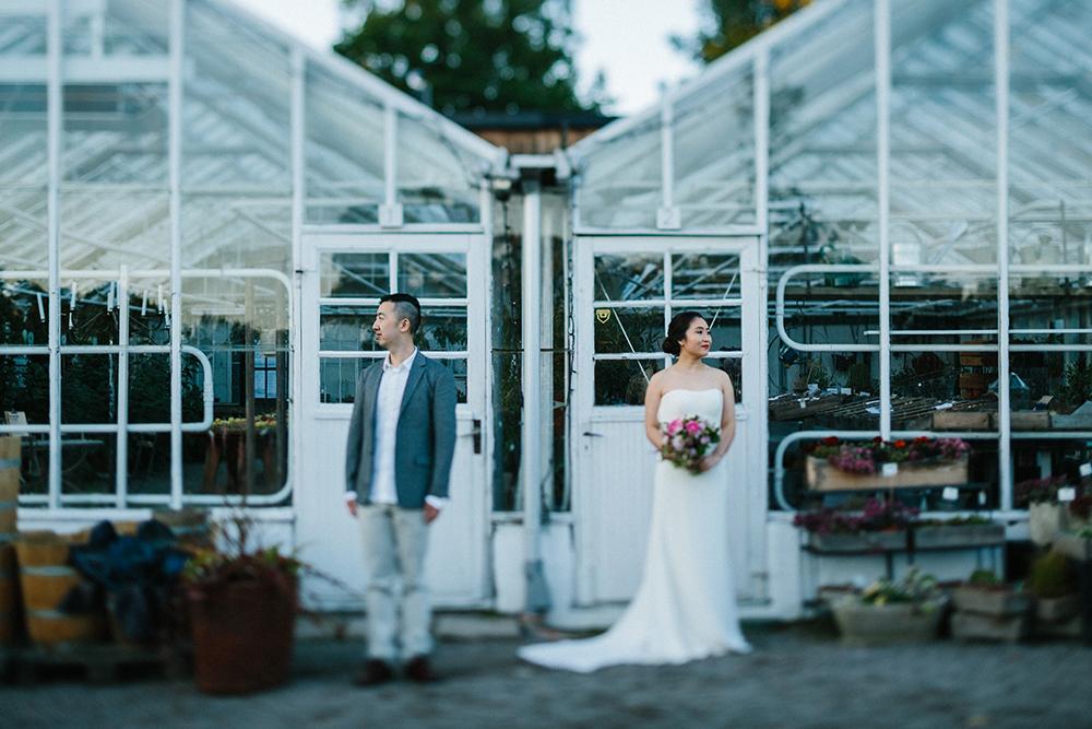 pre-wedding scandinavia