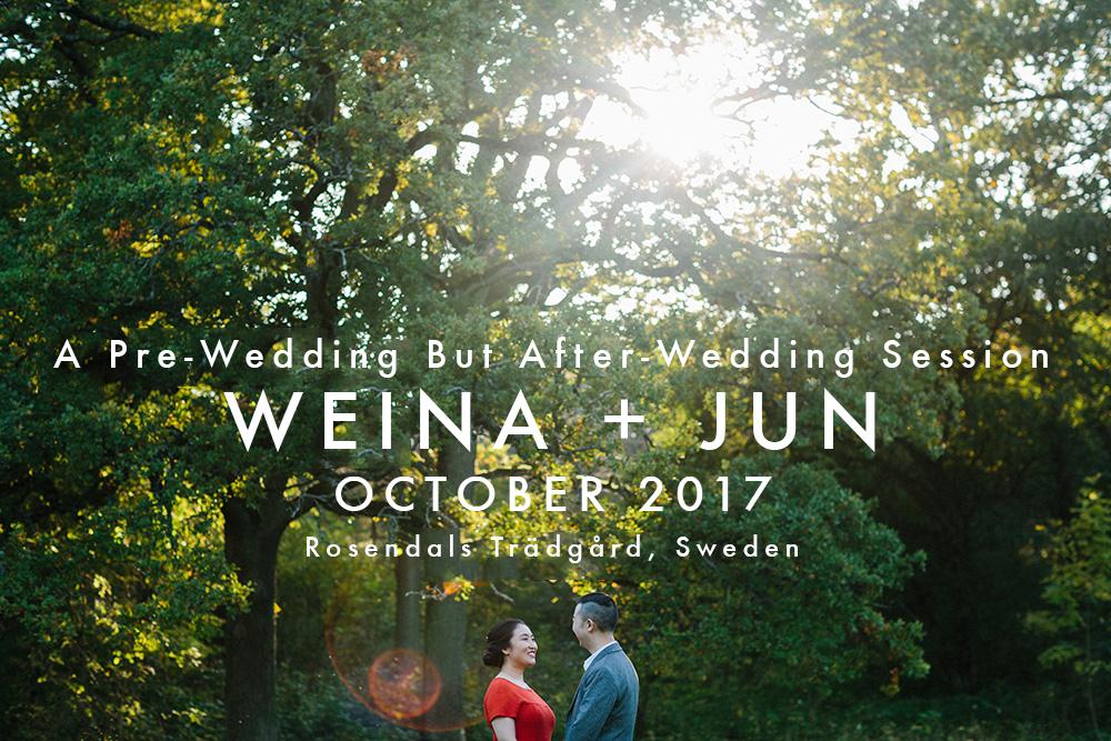 pre-wedding-stockholm